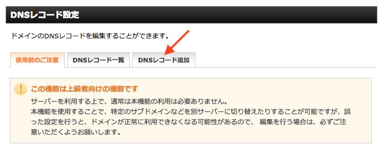 DNS レコード設定ページ