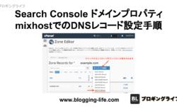 ドメインプロパティ登録確認時のmixhostでのDNSレコード 設定方法
