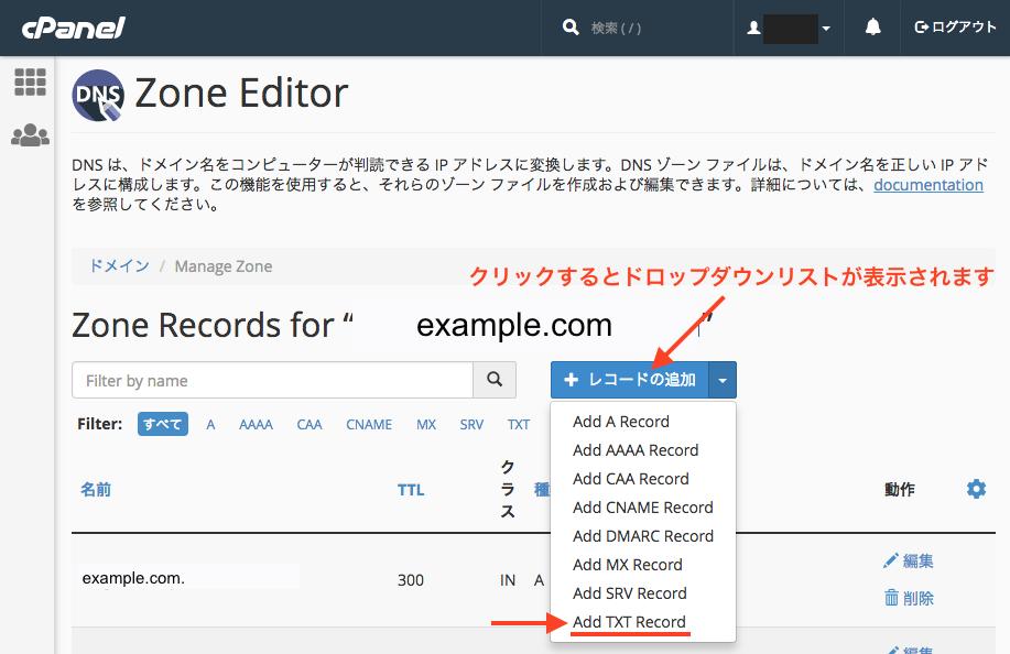 「レコードの追加」を押して、ADD TXT Recordを選択します。