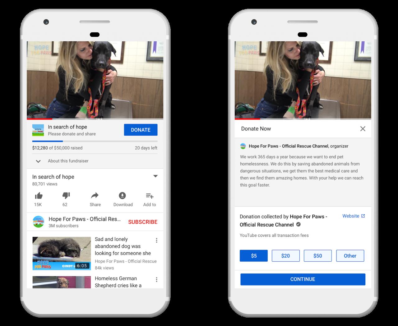 YouTube Givingによる募金活動を促進するページ例